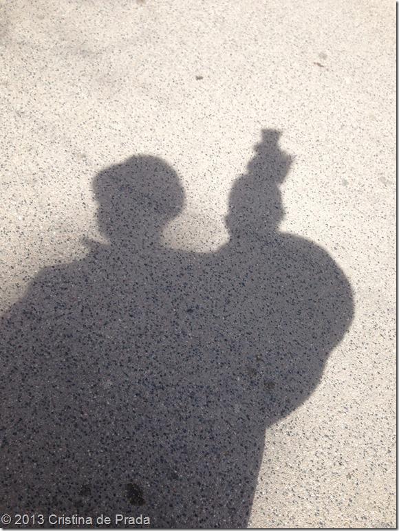 shadow_passejada_2013